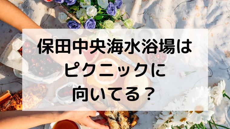 保田中央海水浴場はピクニックに向いてる?