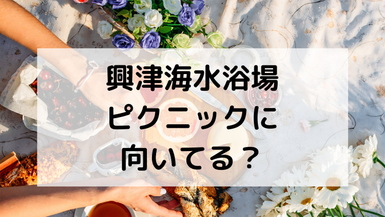 興津海水浴場(おきつかいすいよくじょう)はピクニックに向いてる?